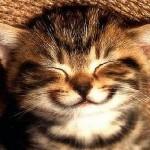 smile perfect nanny