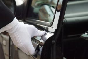 chauffeur glove