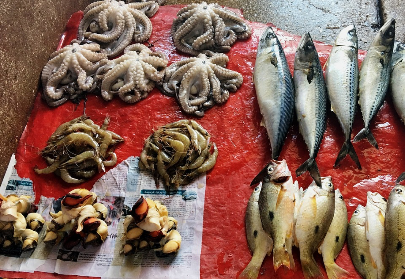 Health - Seafood - Eating Right with Help from A PA